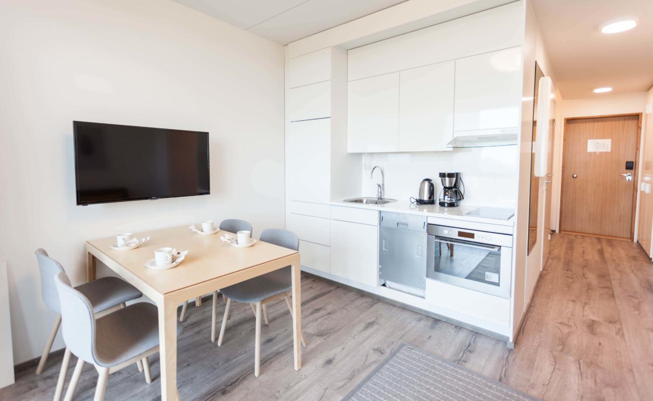 Hotel Sani Apartment Solo kitchen