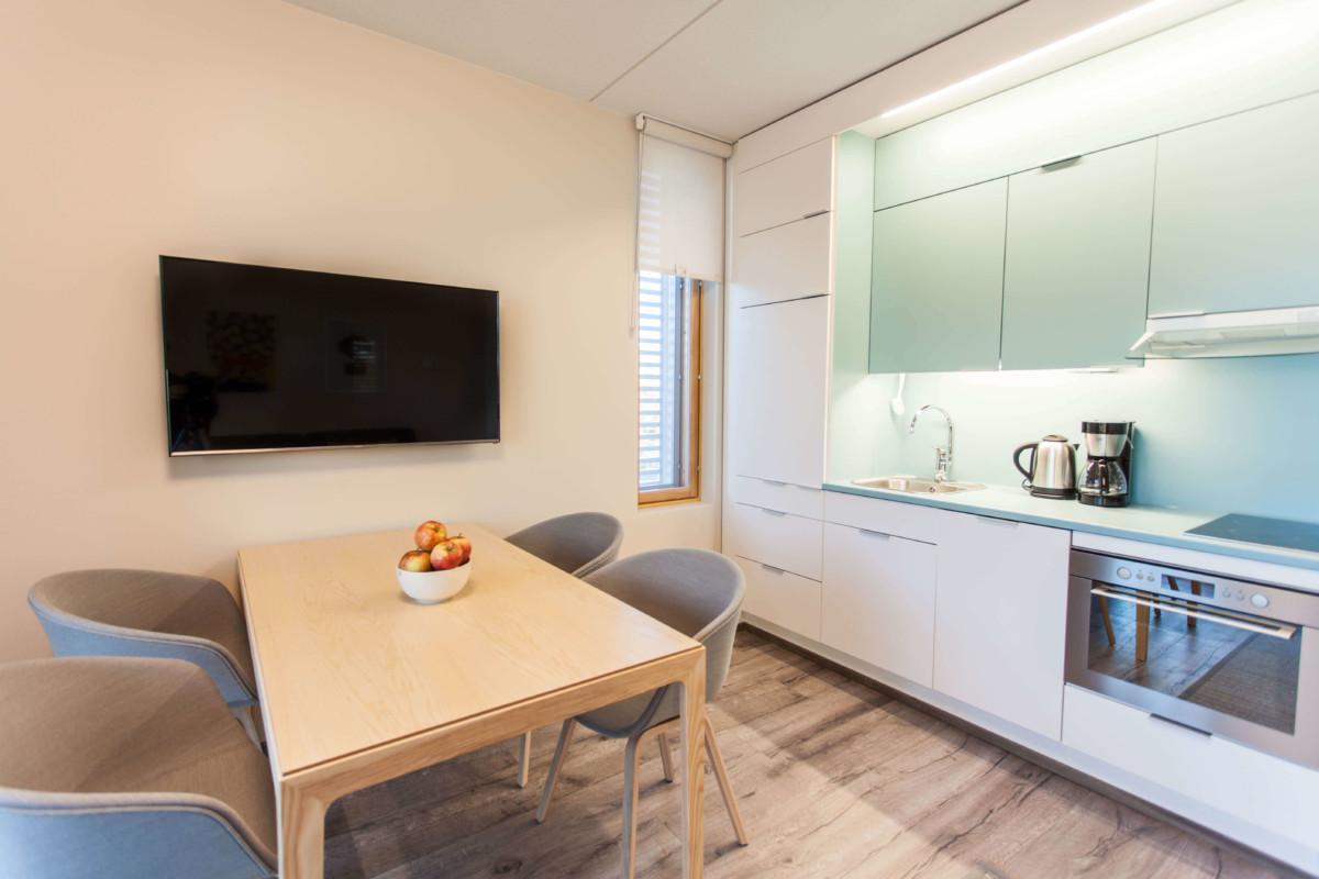 Hotel Sani Apartment Studio kitchen